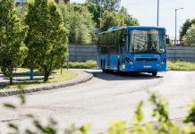 Buss i sommarmiljö