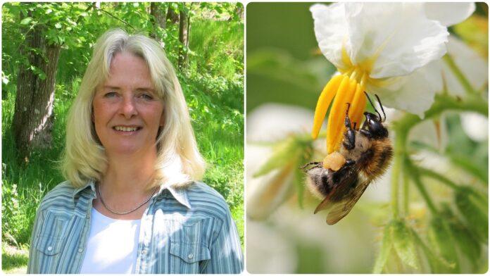 Eva-Lena Larsson och ett bi i en blomma