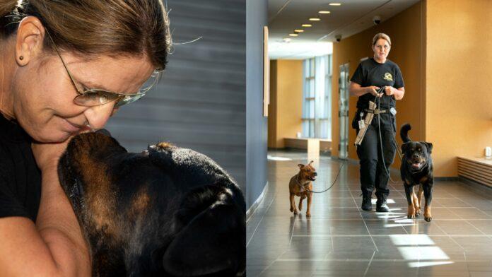 Hundförare och vårdenhetschef Marika Broberg går tillsammans med sina hundar Bosse och Doris i en sjukhuskorridor. Marika får en blöt puss av hunden Bosse